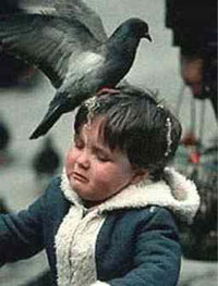 bird-shit-kid200.jpg